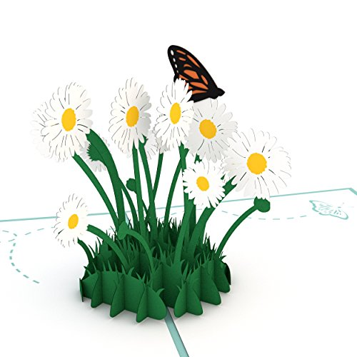 Lovepop Daisy Patch Pop Up Card 3D Mothers Day Springtime Birthday